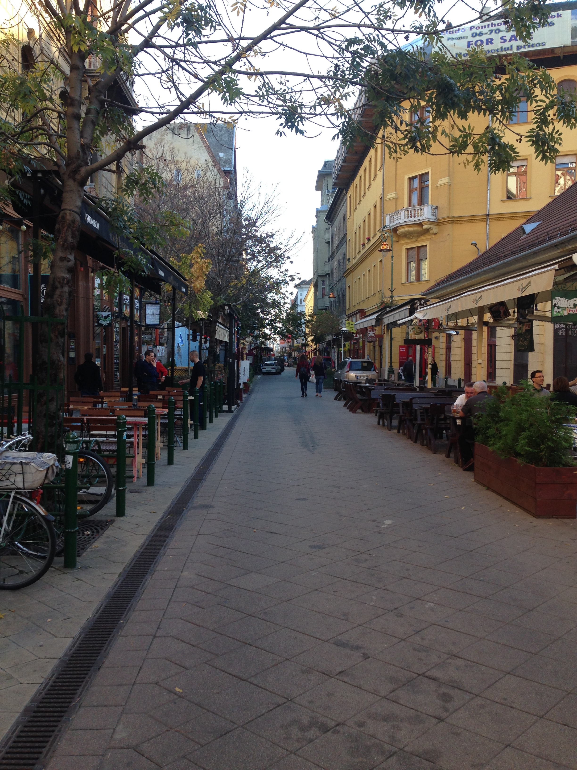 Ráday utca, a street famous for its collection of cafés and restaurants