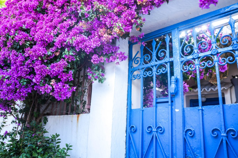 anafiotika-plaka-athens-la-vie-en-blog-all-rights-reserved-32