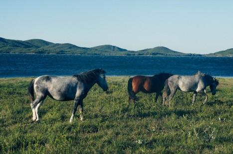 plastira-lake-la-vie-en-blog-all-rights-reserved-5